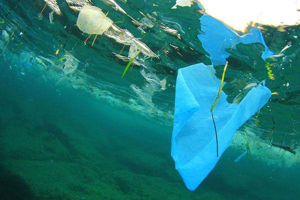 Plastics news marine litter