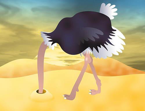 Plastics news ostrich