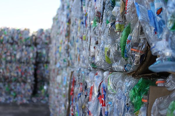 Plastics news From Pet Bottles Bales to Egg Packs With Amut Technology