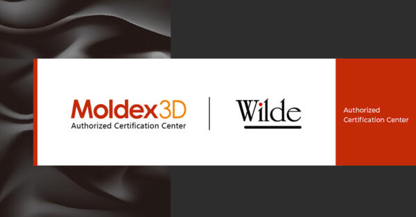 Moldex3D & Wilde Analysis