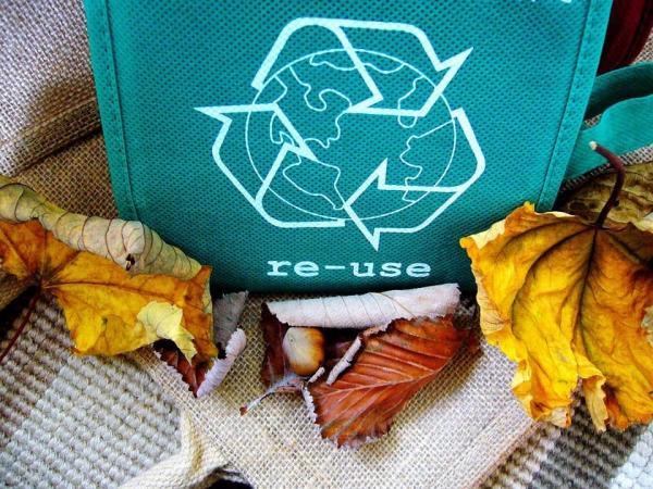 Recycling Symbols: Image credit Shirley810 | Pixabay